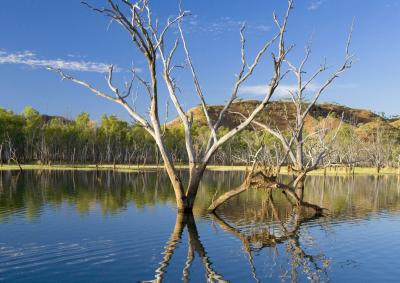 Reflections on the still waters around the Lake Argyle Dam and Ord River area near Kununurra In Western Australia