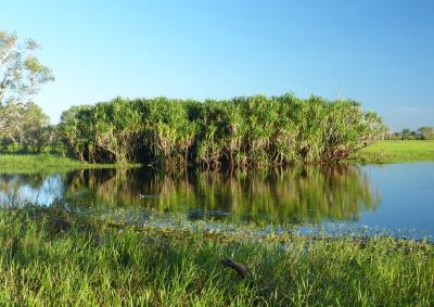 Yellow Waters Wetland Lagoon in the World Heritage Listed Kakadu National Park